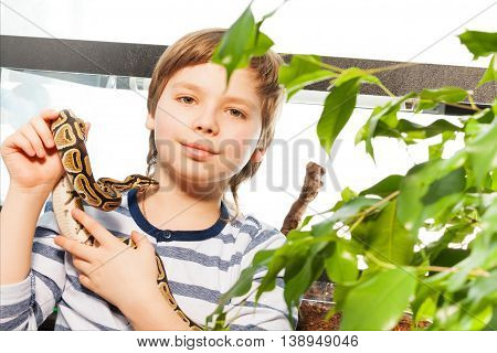 Young boy holding his lovely pet snake - Royal or Ball Python, standing against big reptile house