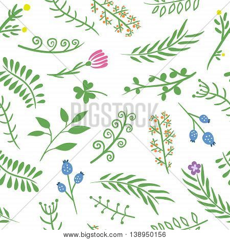 Floral ornate doodle seamless pattern on white background. Herbal pattern. Vector illustration. For backgrounds, wallpapers, wrapping paper, textile, prints.