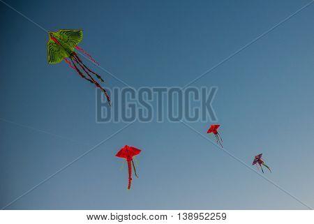 Kites. Nha Trang, Vietnam