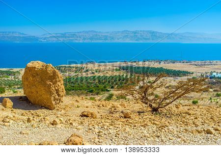 The view from the mountain top on the agricultural planting of Ein Gedi kibbutz on the coast of the Dead Sea Israel.