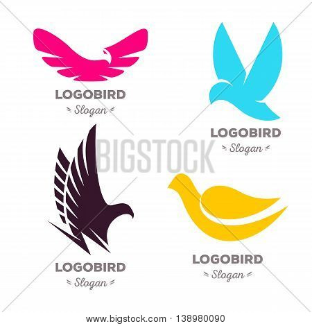 Isolated colorful flying birds vector logo set. Animal logotypes collection. Wings contour illustration. Pigeon silhouette. Eagle icon.