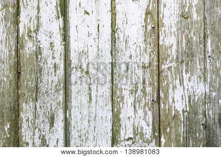 White, rustic, authentic, textured, barn wood background