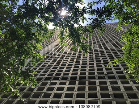 Sun peeking through trees in front of concrete parking garage in Downtown Dallas, Texas