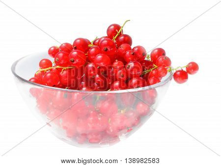 Berries of red currant in a glass bowl