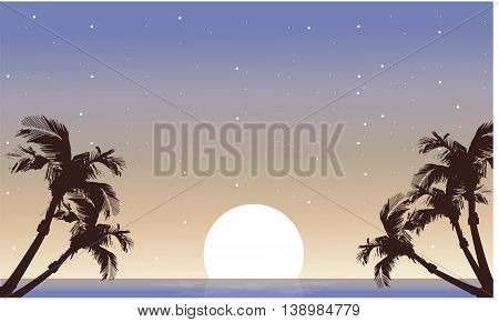 Landscape palm and full moon silhouette at night
