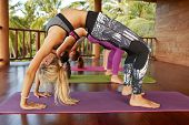 Side view of young women sportswear working out in gym doing backbend bridge Pose. Fitness females doing chakrasana posture on exercise mat at yoga class. poster