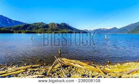 Driftwood On The Shores Of Pitt Lake With The Snow Capped Peaks Of The Golden Ears, Tingle Peak And