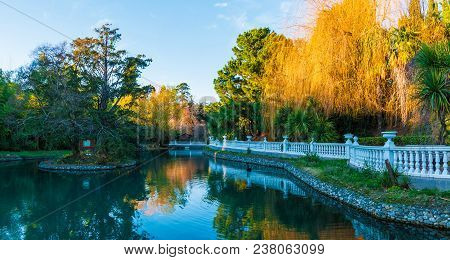 Beautiful Landscape Of Pond And Trees In The Adler Southern Culture Park In Sunny Day, Sochi, Russia