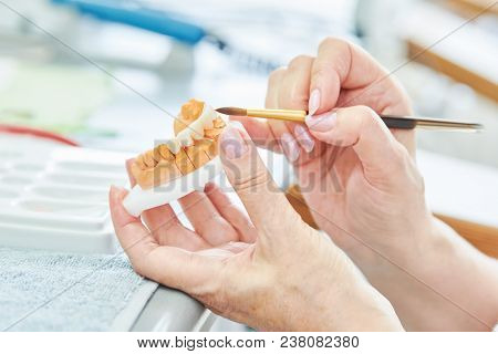 dental technician work. prosthesis production. Painting teeth
