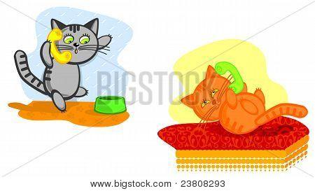 Cats Speak On Telephone