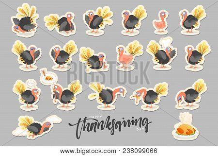 Collection Cartoon Turkey Bird. Happy Thanksgiving Celebration. Funny Character Turkey
