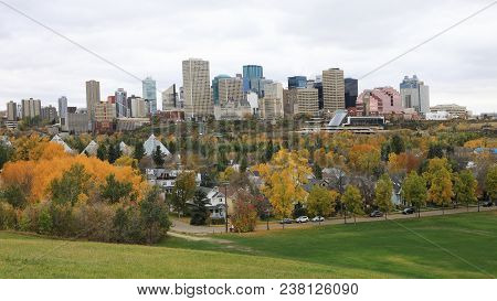 The Edmonton, Canada Cityscape With Colorful Aspen In Foreground