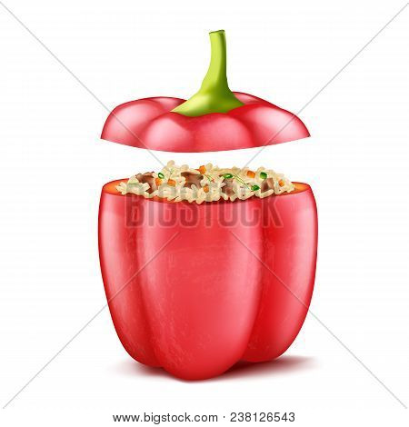 Vector Realistic Illustration Of Stuffed Bell Pepper Filled With Rice And Forcemeat, Isolated On Bac