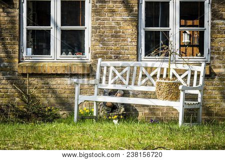 White Bench Outside An Old Brick House With Daffodils  Blooming In The Spring