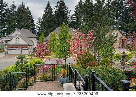 Home Entrance Front Yard Lawn Landscaped Garden With Railings Water Fountain Flowering Trees And Pln