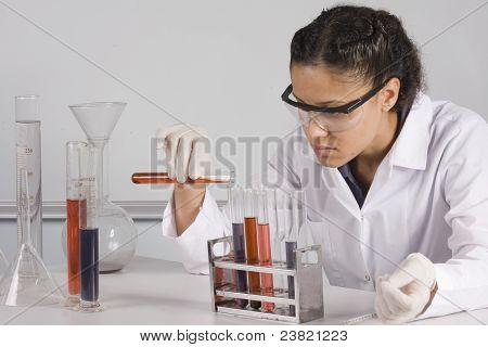 female lab