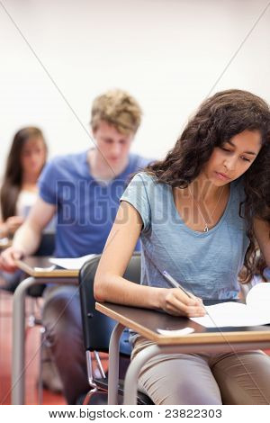 Portrait Of Young Students Working On An Assignment