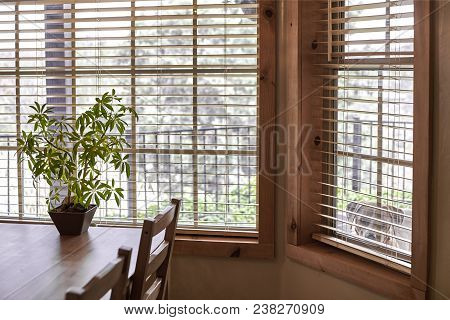A Wooden Kitchen Table And Chairs Near A Window With A Potted Plant And A Dog Looking In The Side Wi