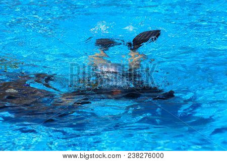Divers Sink In The Pool. The Teacher Teaches The Pupil The Rules And The Lesson Of Diving. Travel, W
