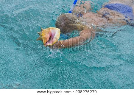 Diving, Diving Under The Water In Fins And A Mask With A Tube On The Reef, Corals And Colorful Fish,