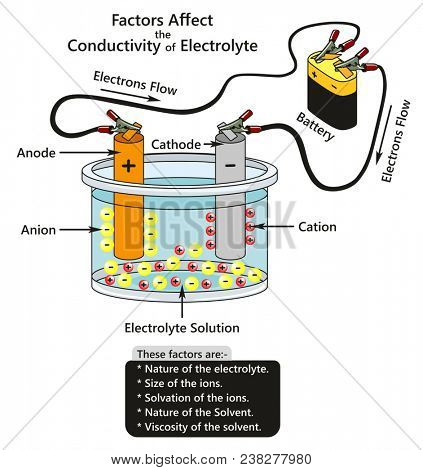 Factors Affect the Conductivity of Electrolyte infographic diagram showing a battery connected to cathode and anode in container contains electrolyte solution ions interaction for chemistry science