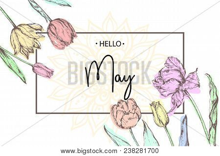 Inscription Hello May On Background With Hand Drawn Flowers. Vector Illustration.