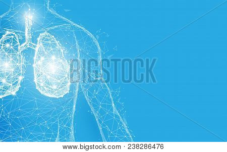 Human Lungs Anatomy Form Lines And Triangles, Point Connecting Network On Blue Background. Illustrat