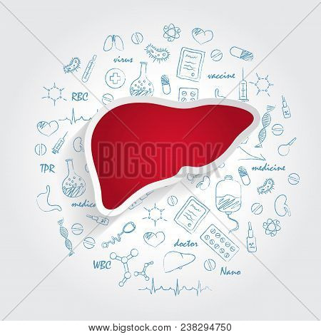 Icons For Medical Specialties. Hepatology And Liver Concept. Vector Illustration With Hand Drawn Med