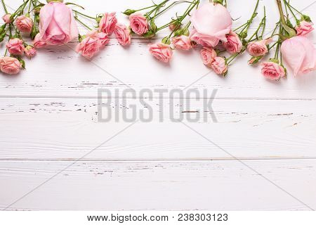 Border From  Pink Roses Flowers  On  White Wooden Background. Floral Still Life.  Selective Focus. V