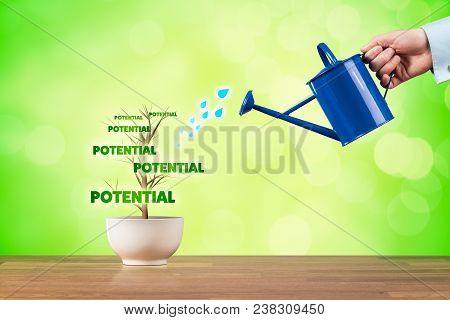 Business Potential Growth Concept. Potential Growth Represented By Plant Watered By Businessman.