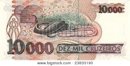 10000 Cruzeiro banknote from Brazil South America poster