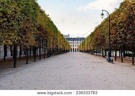 Paris, France - August 8, 2017. Palace Royal Alley With Sculpted Trees. Paris Famous Touristic Place