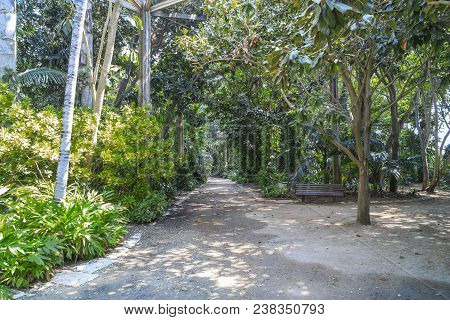Tel Aviv, Israel - September 19, 2017: There Are Walkways In The Tropical Garden Of The Yarkon Park.