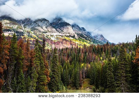 Northern nature in the beginning of autumn.  The concept of active tourism. The Rockies of Canada. The snow-capped mountains