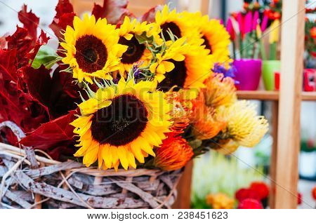 Beautiful Sunflower, Protea Flower Bouquet Close Up. Spotted On The Flower Market.
