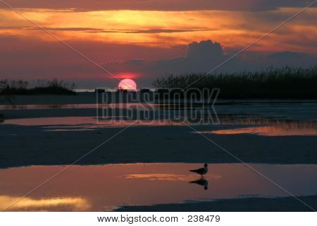 Sunset Reflections