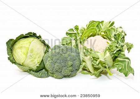 Cabbage, Cauliflower And Broccoli