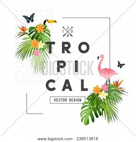 Tropical Rainforest Elements And Frame With Palm Tree Leaves, Flora, And Wildlife. Vector Illustrati