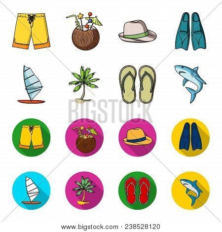 Board With A Sail, A Palm Tree On The Shore, Slippers, A White Shark. Surfing Set Collection Icons I
