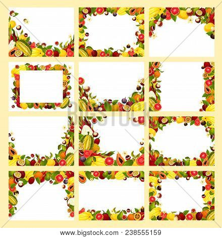 Fruit Frame Of Exotic And Tropical Berry With Copy Space. Papaya, Grapefruit And Orange, Feijoa, Fig