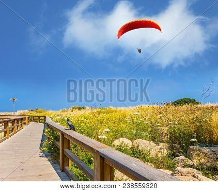 The park of Caesarea, Israel. The red parachute hovers above the flowering meadow. On the wooden railing of pedestrian road sits a gray crow. Concept of ecological; extreme and historical tourism