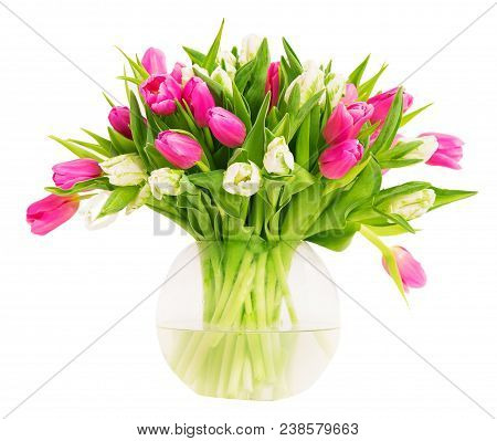 Tulip Flowers In Glass Vase Isolated Over White Background, Bunch Of Colorful Tulips In Flower Pot