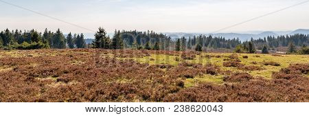 French Landscape - Vosges. View Towards The Vosges Massif With Hills And Trees.