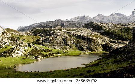 Mountain Lake With Several Animals Grazing Around.