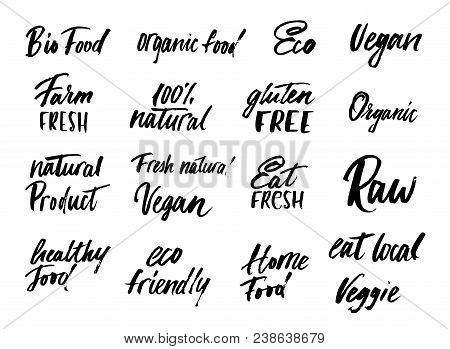 Big Set Of Eco Food Labels And Inscriptions Isolated On White Background Background. Modern Brush Le