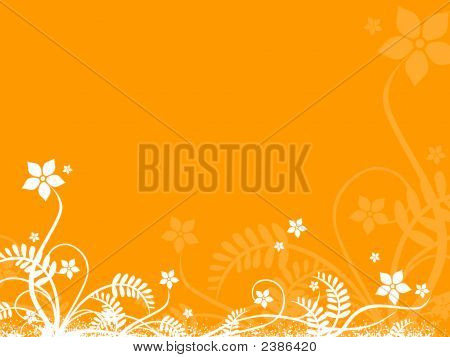 Orange Background With White Floral
