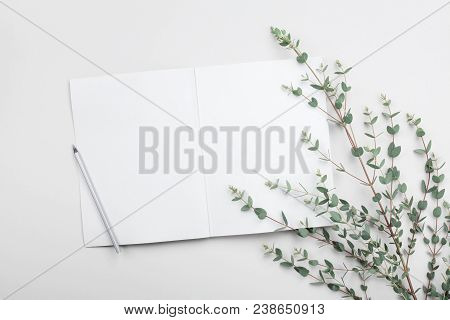 Open Empty Notebook And Eucalyptus Leaf On Gray Table From Above. Minimalistic Working Desk. Flat La
