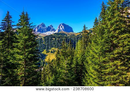 The coniferous forests at the foot of limestone and dolomite rocks. The most beautiful route in the Italian Dolomites, the Southern Limestone Alps. The concept of active and car tourism