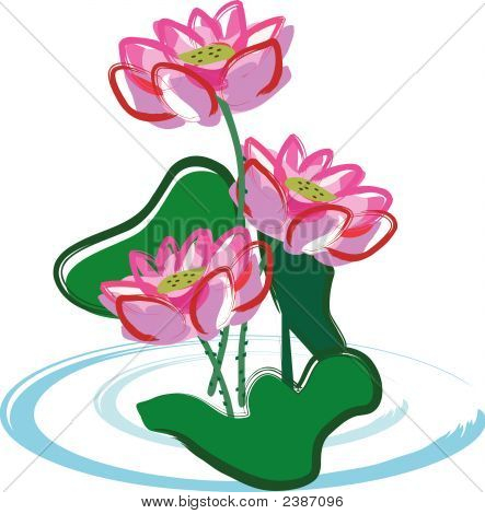 Lotus Flower.Eps