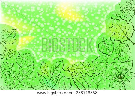 Background With Leaves Of Various Plants, Green Contours On Abstract Pattern. Vector